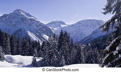 Winter postcard: Forest and mountains in timelapse