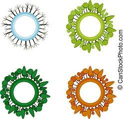 winter., quattro, vettore, primavera, set., albero, infographic, autunno, stampa, stagioni, illustrations., estate, icona