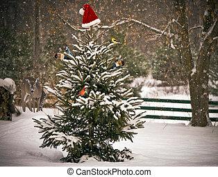 winter., rassemblement, animaux