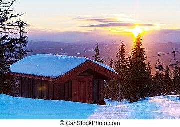 Winter resort - Winter forest