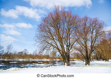winter season - winter river and trees in winter season