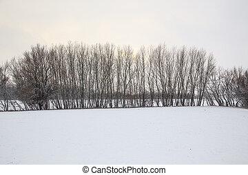 Winter river landscape