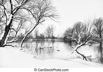 winter river and trees in winter season