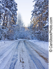 Winter road, a forest