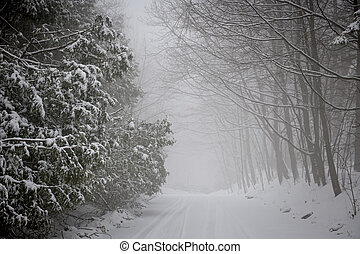 Winter road during snowfall - Snowy trees along slippery...