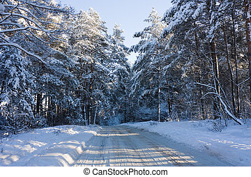 Winter road, forest