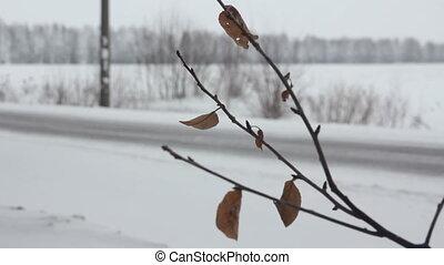 winter road in a snowy field