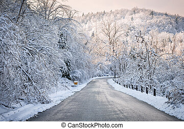 Winter road in snowy forest - Scenic winter road through icy...