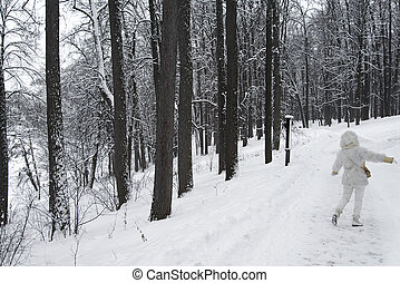 Winter road in the Park.