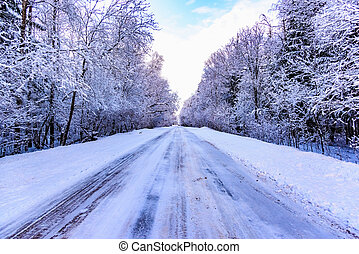 winter road in the woods - Alley road protector cars winter...