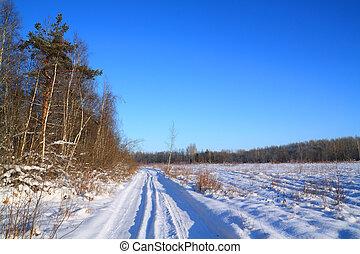 winter road near by wood