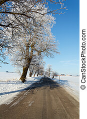 Winter road on a sunny frosty day
