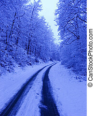 Winter road - Path covered snow