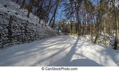 Winter road through forest, rear camera