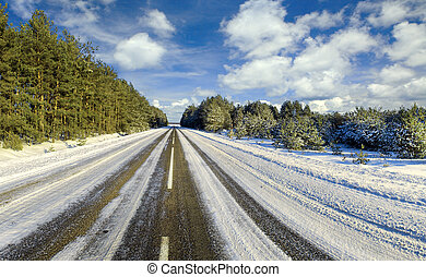 Winter road to wood, Belarus