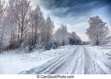 winter road, trees and bushes