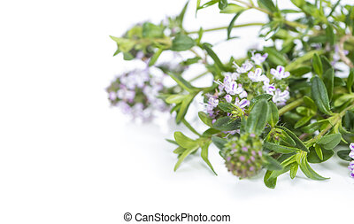 Winter Savory (isolated on white) - Bunch of fresh Winter ...