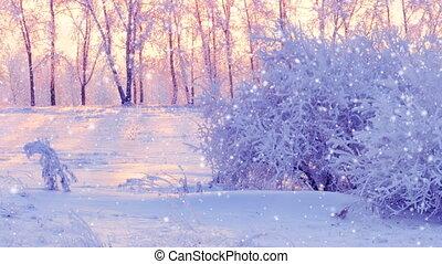 winter scene in park panning