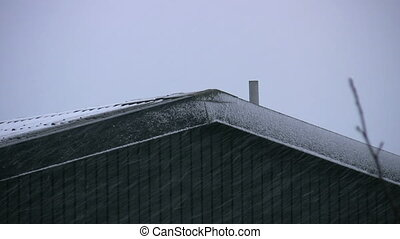 Winter Scene. Snow day 3