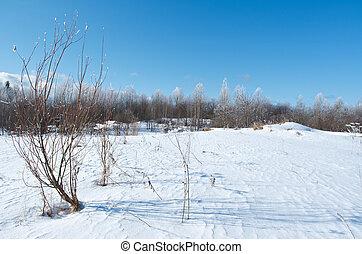 Winter scene .