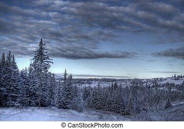 Winter scene with moody skies