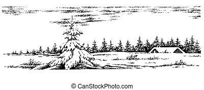 Winter scenery - Winter rural scenery. Christmas card