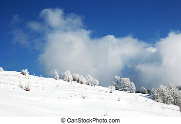 winter landscape with a clouds and a snow-covered trees