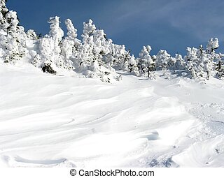 winter, schnee, abweichungen
