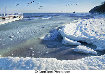 winter sea landscape