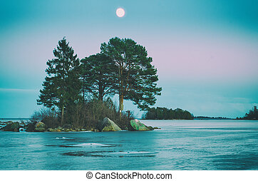 Winter sea landscape with moon