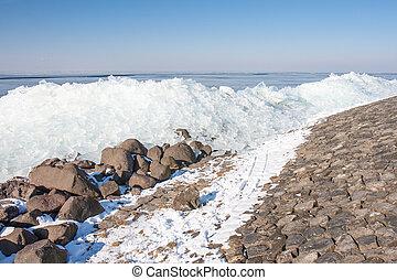 Winter seascape with hummocks along Dutch coast