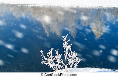 winter season - winter river and trees in winter season