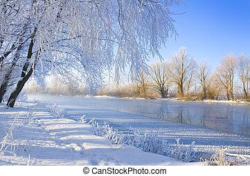 winter season - frozen river and trees in winter season