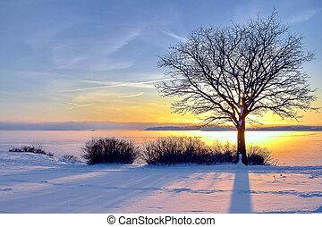 winter, sky., nature., ondergaande zon , vurig, samenstelling, landscape