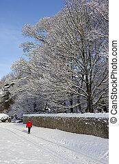 Winter Snow - England