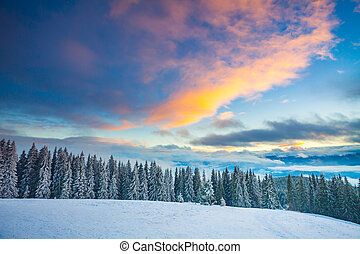 Winter snow landscape in the Carpathians mountains. Ukraine.