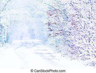 Winter snow road and forest landscape