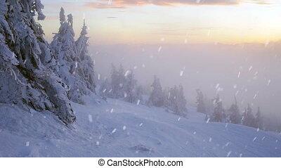 Winter snow storm blizzard