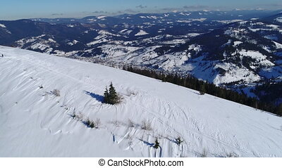 Winter snow trees. aerial view fly over. nature - Winter...