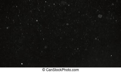 Winter Snowfall Black Background