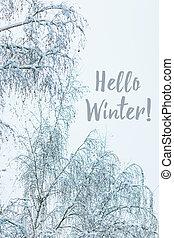 Winter snowy day