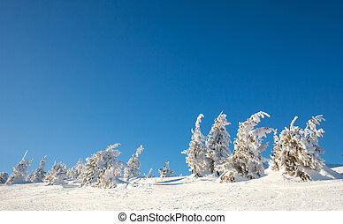 Winter snowy landscape of mountains in background of blue sunny sky