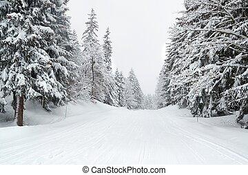 Winter Snowy Mountain Road Landscape