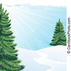 Winter solar landscape - Green Fir trees in the bright...