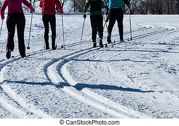 winter sports cross-country skiing, icon sports, winter...