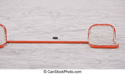 Winter sports. Hockey. The puck is in the gate - Winter...