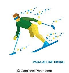 Winter sports - para-alpine skiing. Disabled skier running downhill