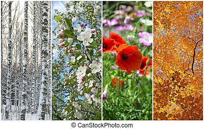 Winter, spring, summer, autumn. Four seasons.
