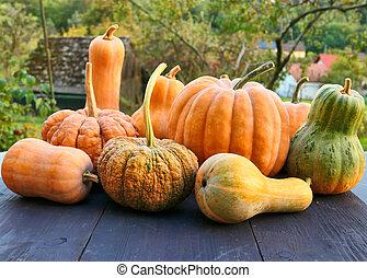 Winter squashes and pumpkins Cucurbita moschata