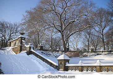Winter Steps Central Park